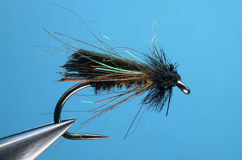 Drowned Turkey Fly
