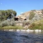 San Juan River Update