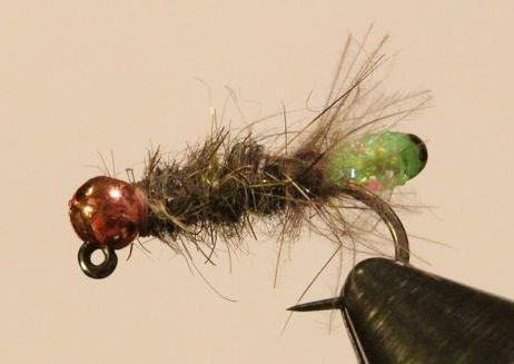 Fly of the Month - Peeking Caddis