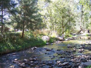 Rio Ruidoso Reclassification as 'Cool Water' Stream