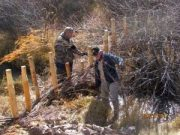 Volunteer conservation project – Saturday, April 28