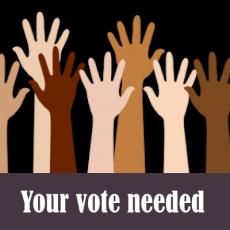 NM Trout By-Law Amendment & Vote