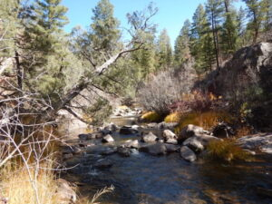 Proposal for Greater Protections for Northern New Mexico Rivers